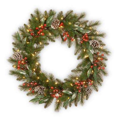 24 in. Frosted Pine Berry Collection Wreaths with Cones, Red Berries, Silver Glittered Eucalyptus Leaves