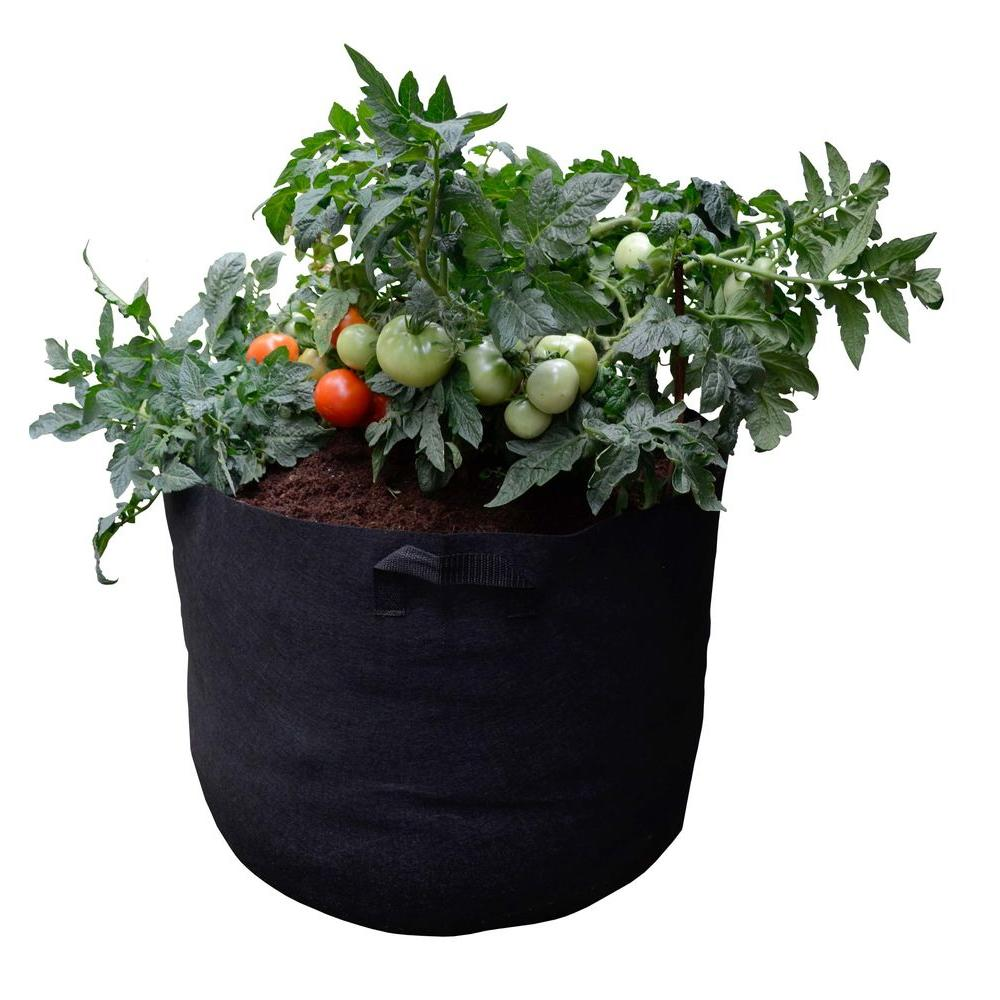 Lovely Viagrow Mini Raised Bed Fabric Pot Container With Coir/Coco Growing Media