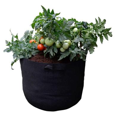 Mini Raised Garden Bed Fabric Pot Container with Coir/Coco Growing Media