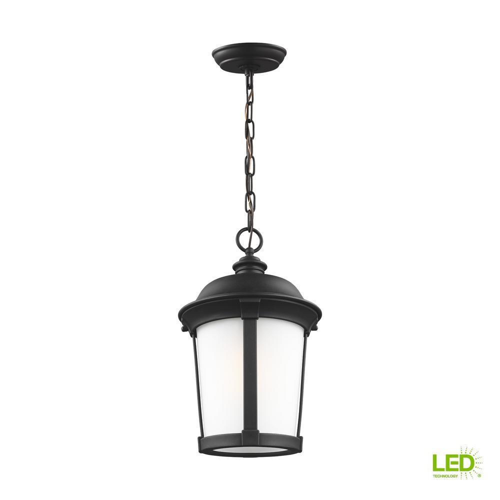 Calder Black 1-Light Hanging Pendant with LED Bulb