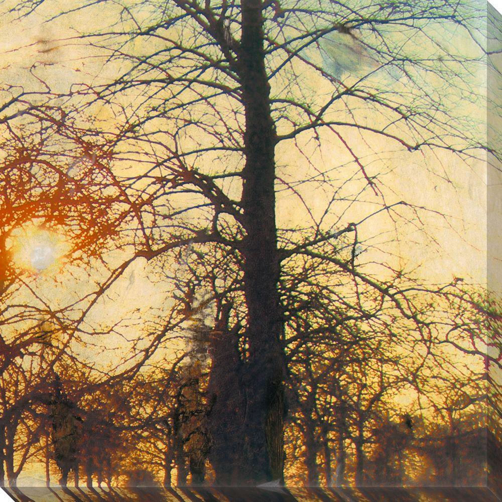 NEP Art 40 in. x 40 in. Nightfall II Oversized Canvas Gallery Wrap