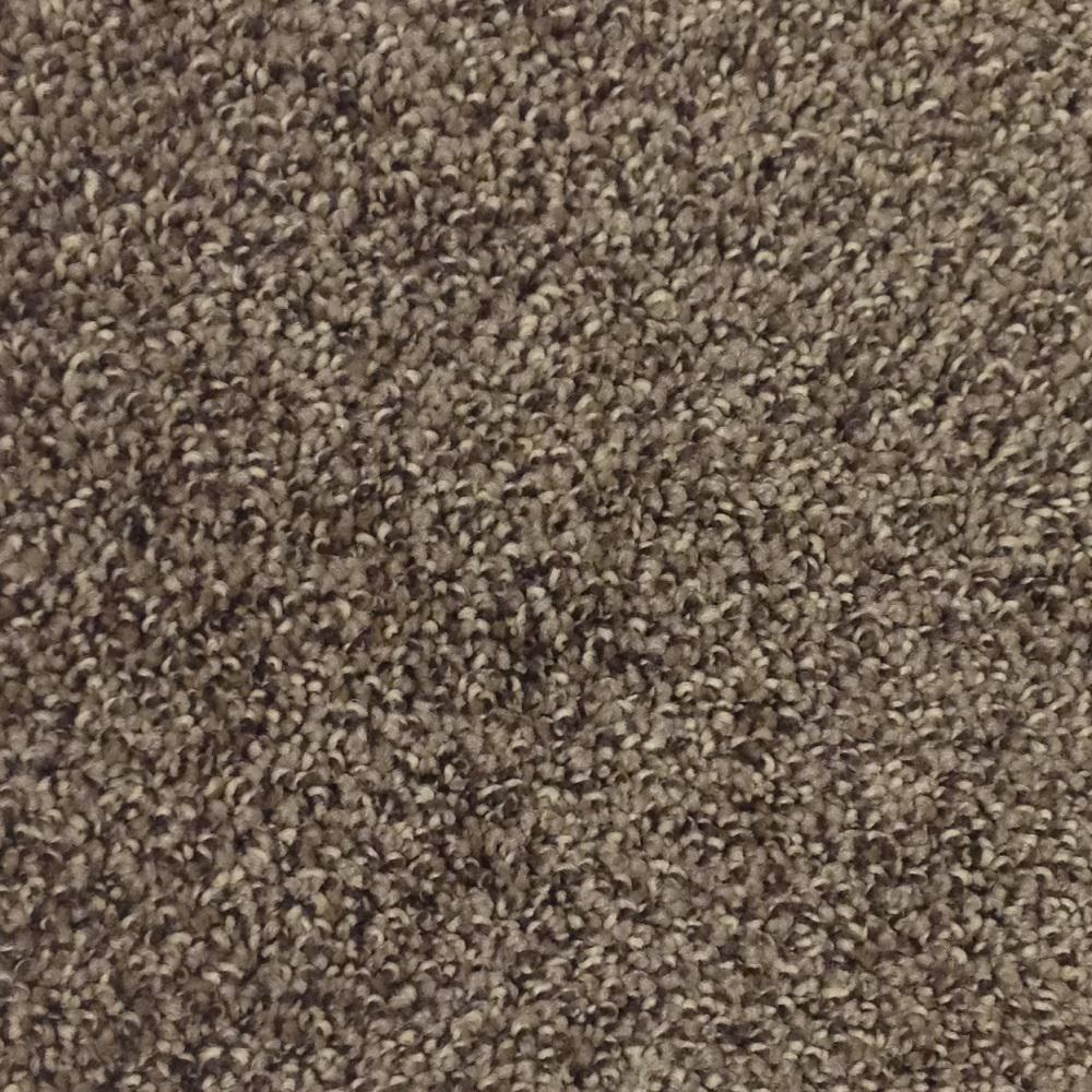 Trafficmaster Carpet Sample Mystic Color Coffee Bean