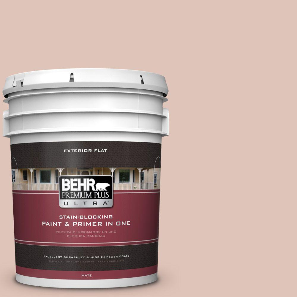 BEHR Premium Plus Ultra 5-gal. #PPU2-7 Coral Stone Flat Exterior Paint