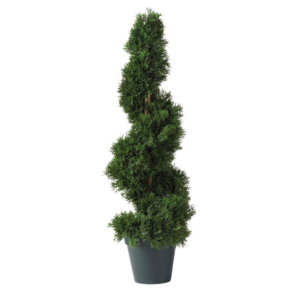 2 ft. Cedar Spiral Silk Tree