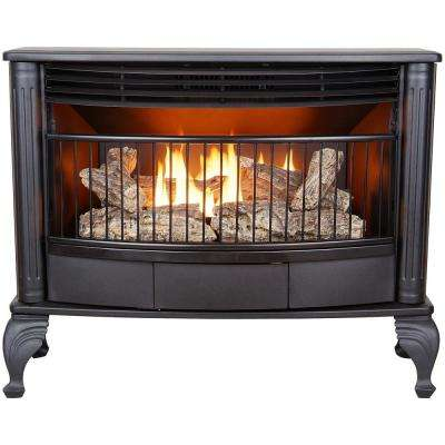25,000 BTU Ventless Dual Fuel Gas Stove with Remote