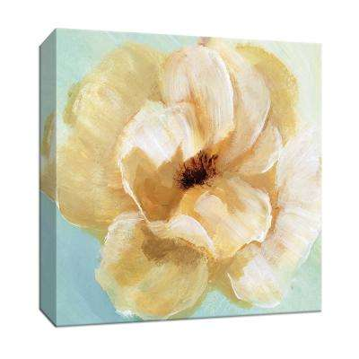 15 in. x 15 in. ''Soft Sunday II'' By PTM Images Canvas Wall Art