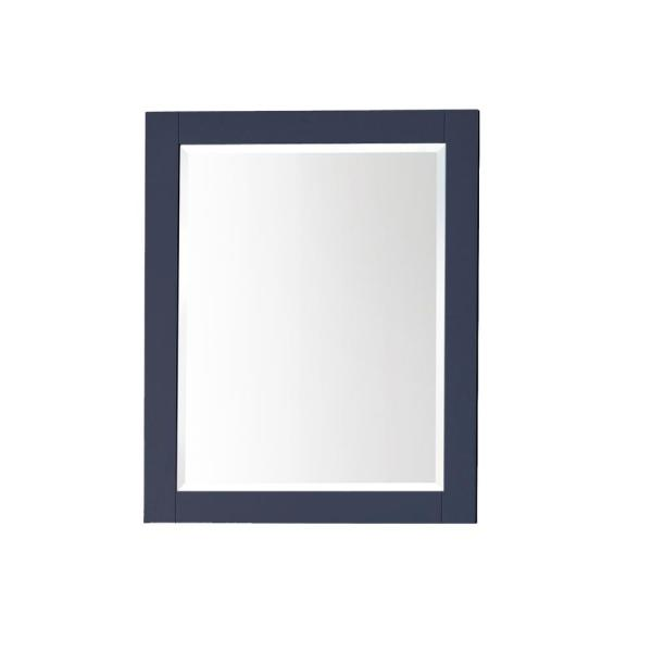 24 in. W x 30 in. H x 5 in. D Surface-Mount Medicine Cabinet in Navy Blue