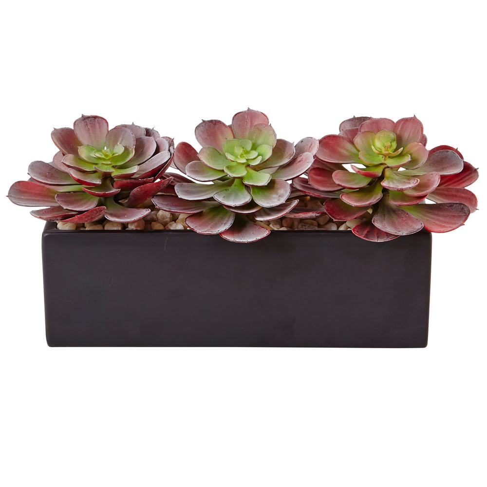 Nearly Natural Indoor 6 in. H Mini Echeveria Artificial Succulent in ...