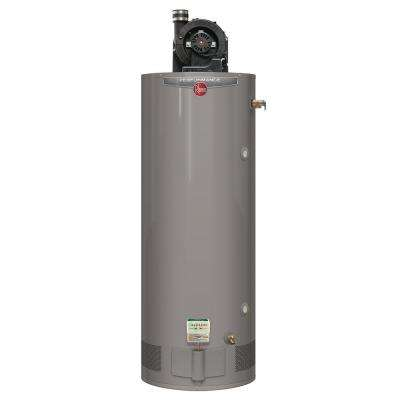 Performance 75 Gal. Tall 6 Year 75,100 BTU Liquid Propane Gas Power Vent Water Heater