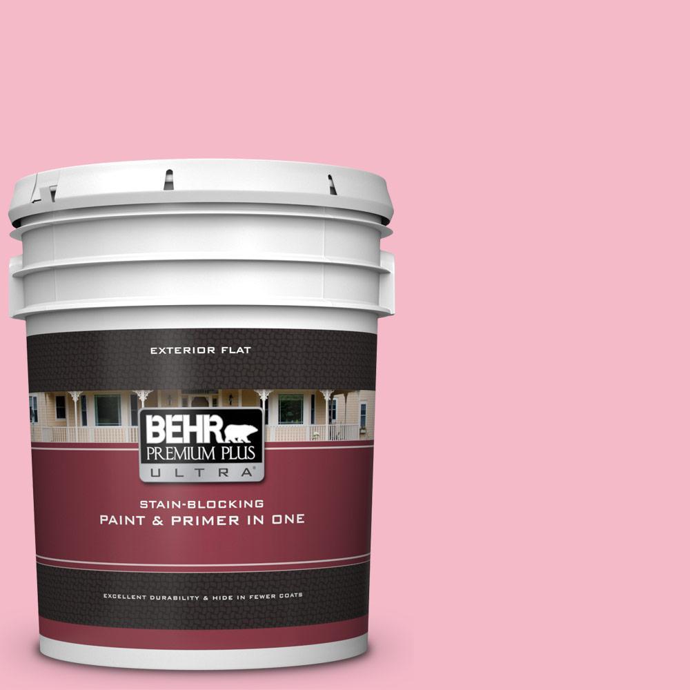 120c 2 Pink Punch Flat Exterior Paint