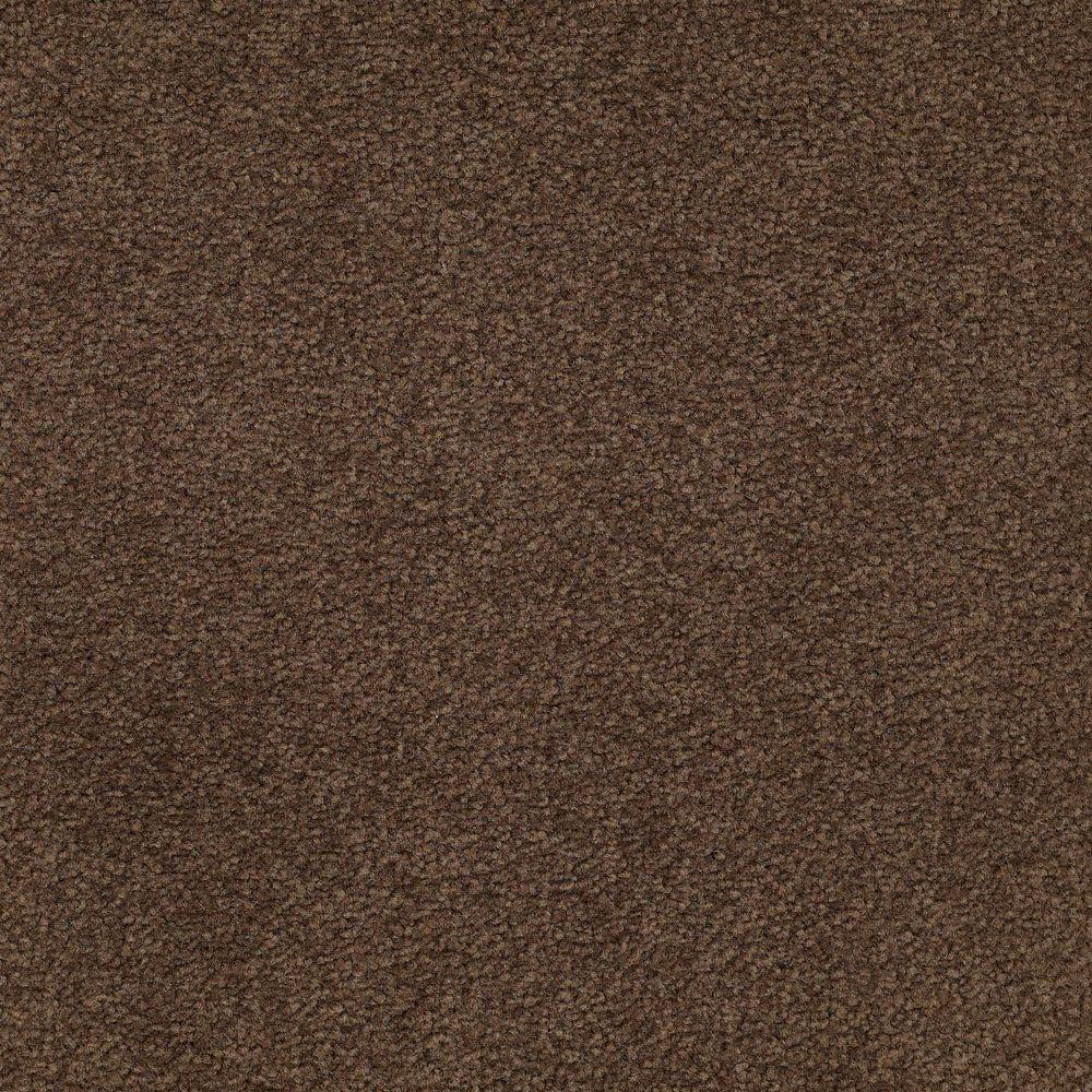 Platinum Plus Carpet Sample Enraptured I Color
