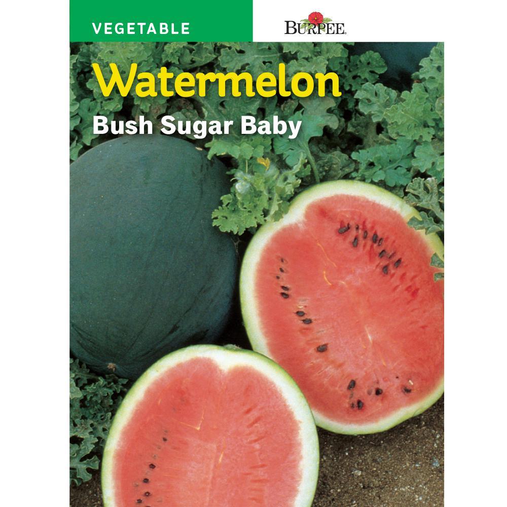 Bur Bush Sugar Baby Watermelon Seed