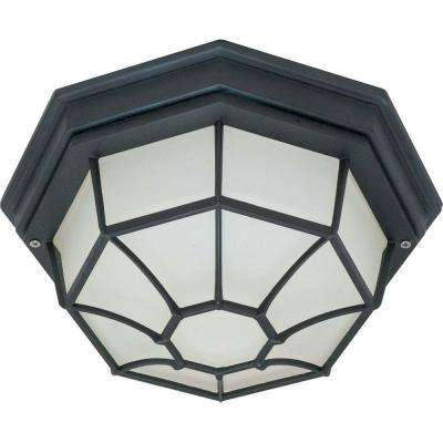 1-Light Outdoor Textured Black Ceiling Spider Cage Fixture with Die Cast with Glass Lens