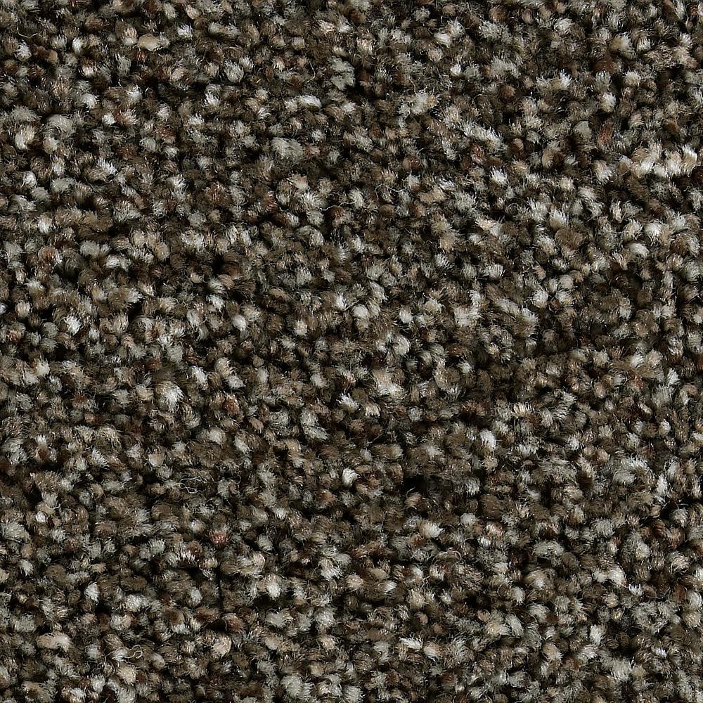 Carpet Sample - Greenlee I - In Color Rustic Charm 8 in. x 8 in.