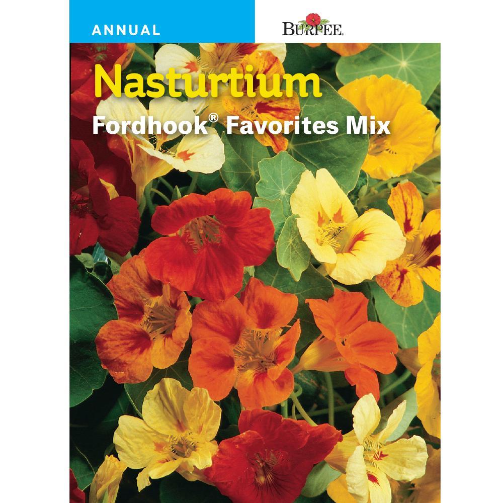 Nasturtium Fordhook Favorites Mix Seed