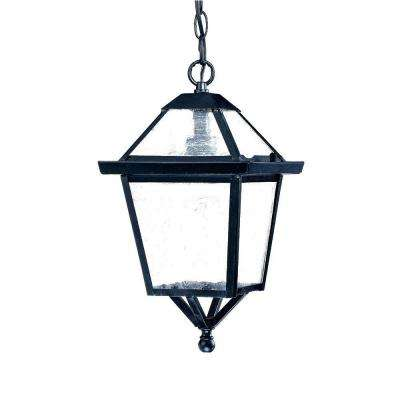 Bay Street Collection 1-Light Matte Black Outdoor Hanging Light Fixture