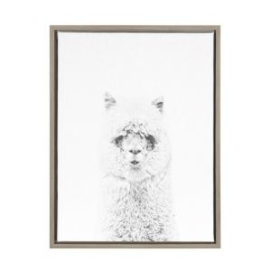 24 in. x 18 in. ''Hairy Alpaca'' by Tai Prints Framed Canvas Wall Art