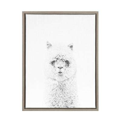 """24 in. x 18 in. """"Hairy Alpaca"""" by Tai Prints Framed Canvas Wall Art"""