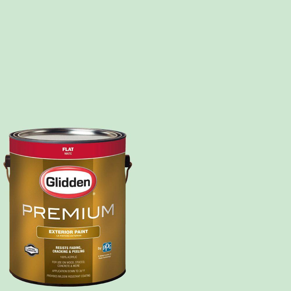 Hdgg55d New Mint Green Flat Latex Exterior Paint