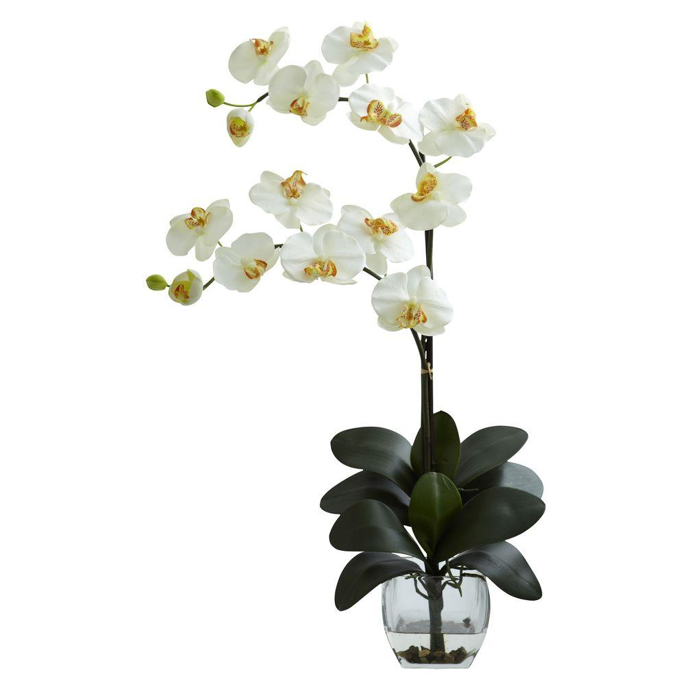 nearly natural double phalaenopsis orchid with vase arrangement in rh homedepot com orchid vases orchid flower with vase