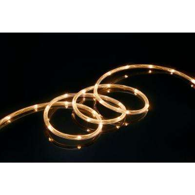 Clear rope lights christmas lights the home depot 16 ft warm white led mini rope light aloadofball Choice Image