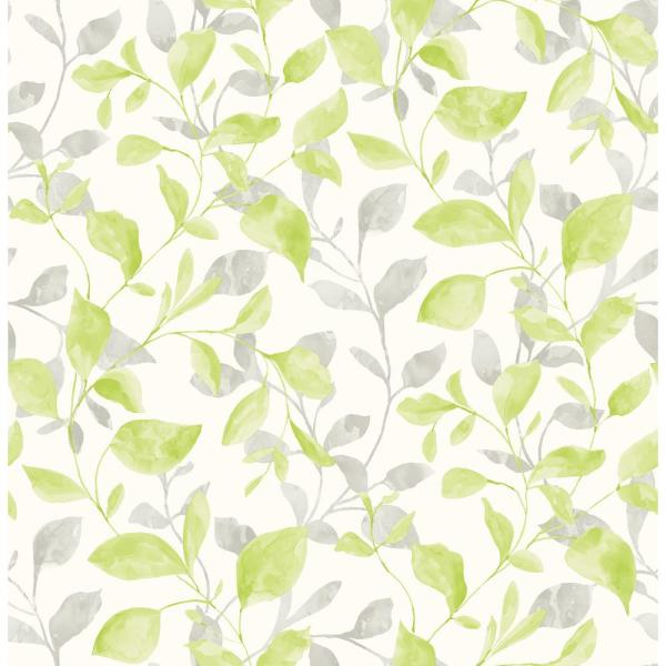 Wyn, Catalina Trail Green Vine Wallpaper
