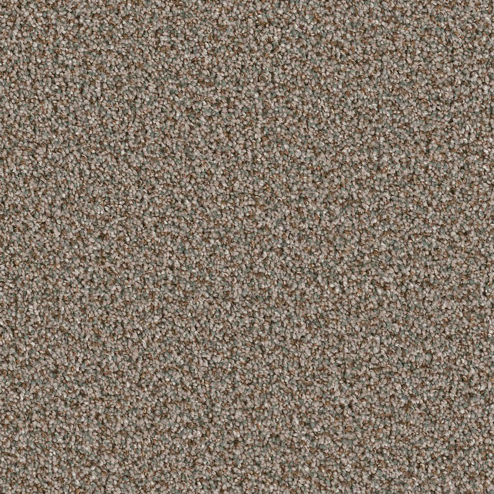 Trafficmaster Residential Carpet Sample Charming In