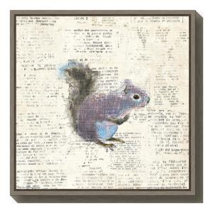 """""""Into the Woods V no Border (Squirrel)"""" by Emily Adams Framed Canvas Wall Art"""