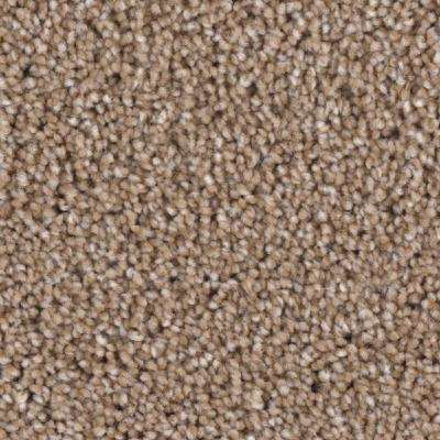 Carpet Sample - Scout's Crossing I - Color Case Texture 8 in. x 8 in.