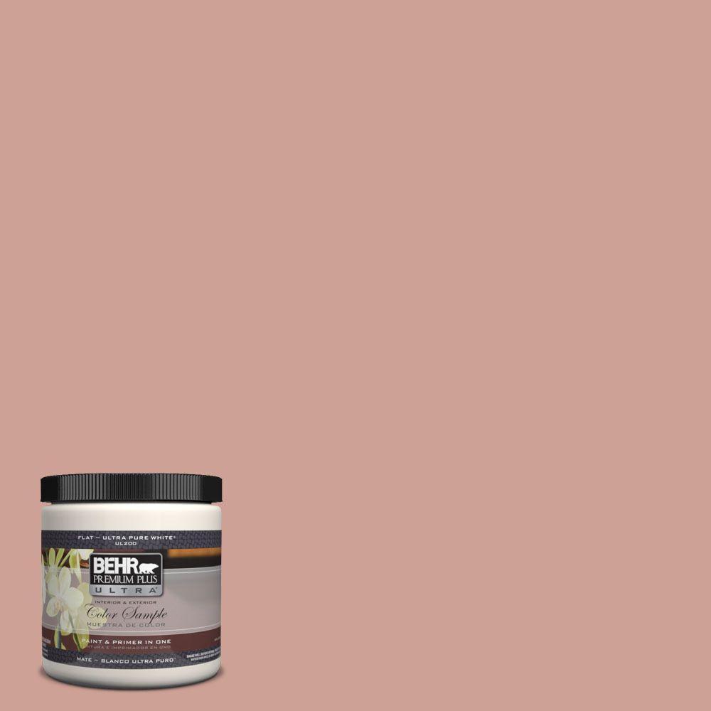 BEHR Premium Plus Ultra 8 oz. #220F-4 Sombrero Tan Interior/Exterior Paint Sample