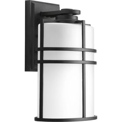 Format Collection 1-Light Black 11.6 in. Outdoor Wall Lantern Sconce