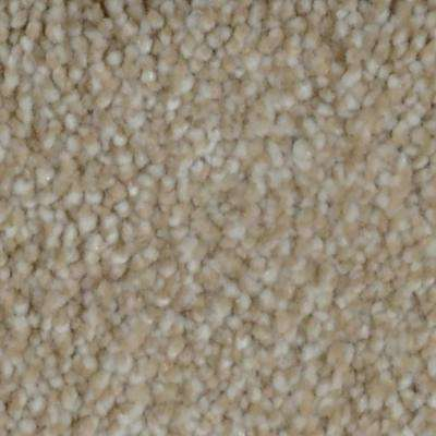 Carpet Sample - Harvest III - Color Pawnee Texture 8 in. x 8 in.