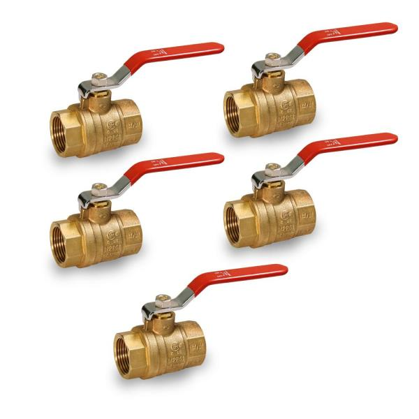 Premium Brass Gas Ball Valve, with 1 in. FIP Connections (5-Pack)