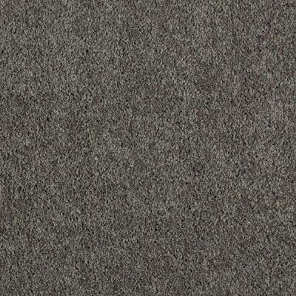 Carpet Sample - Ambrosina I - Color Silhouette Texture 8 in. x 8 in.