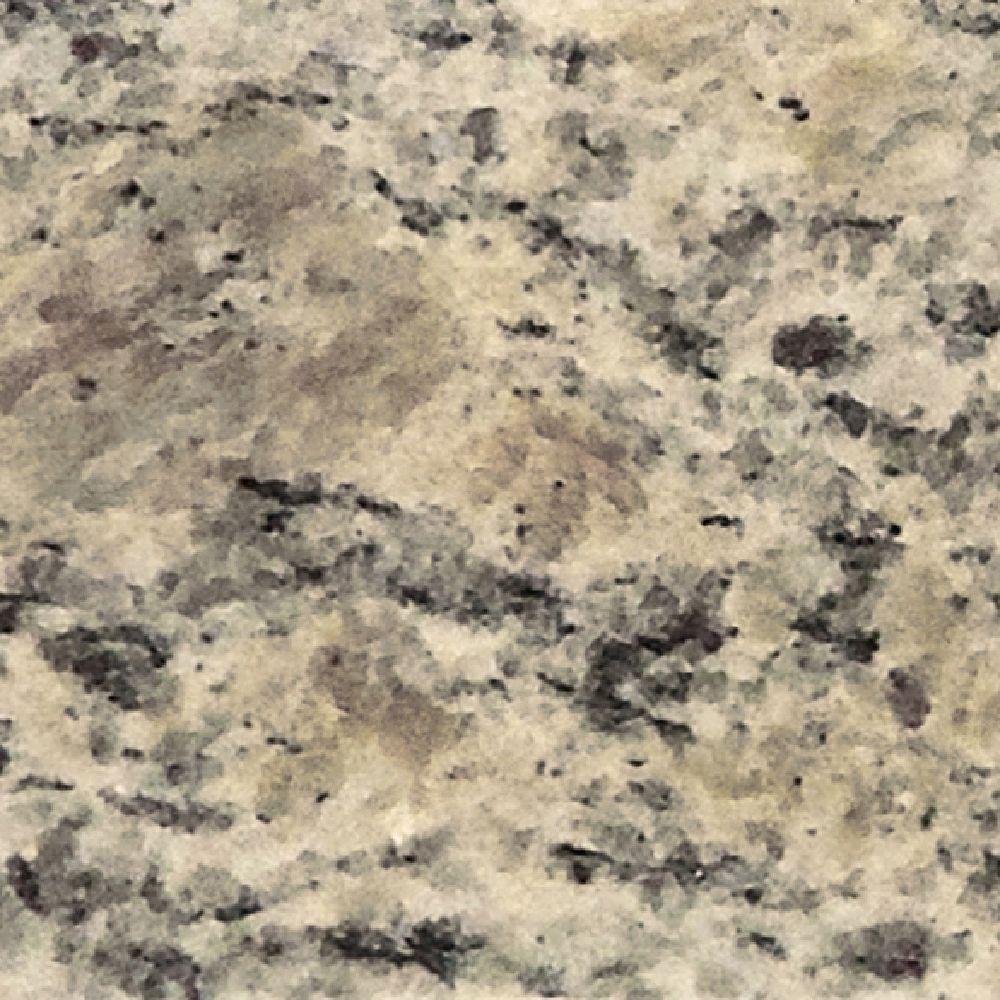 Pegasus 4 in. x 4 in. Santa Cecilia Granite Sample