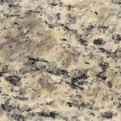 4 in. x 4 in. Santa Cecilia Granite Sample