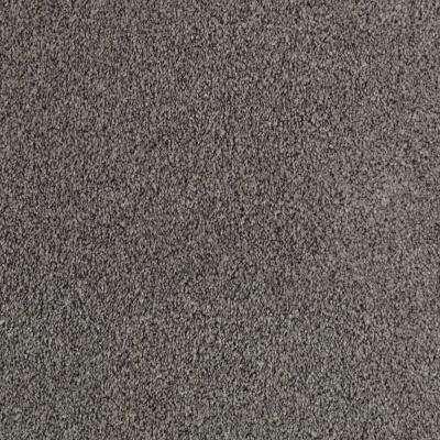 Playful Moments I - Shipyard Textured Tonal 12 ft. Carpet