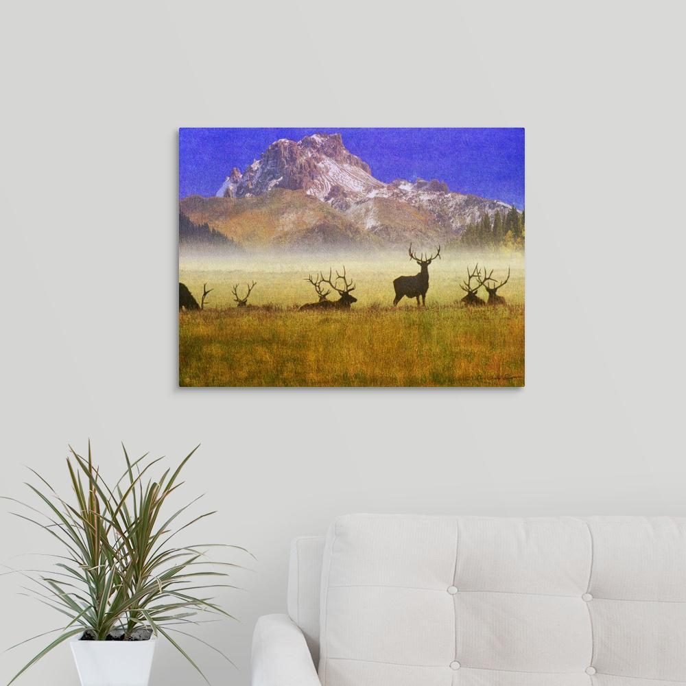 Bull Elk by Chris Vest Canvas Wall Art, Multi-Colored