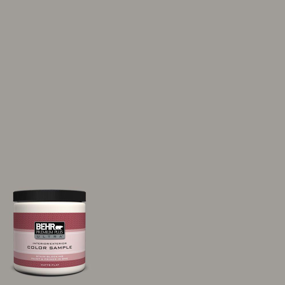 8 oz. #BNC-17 Casual Gray Interior/Exterior Paint Sample