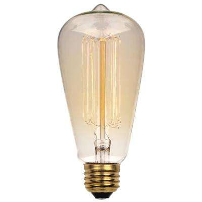 60-Watt Timeless Vintage Inspired Incandescent ST20 Light Bulb