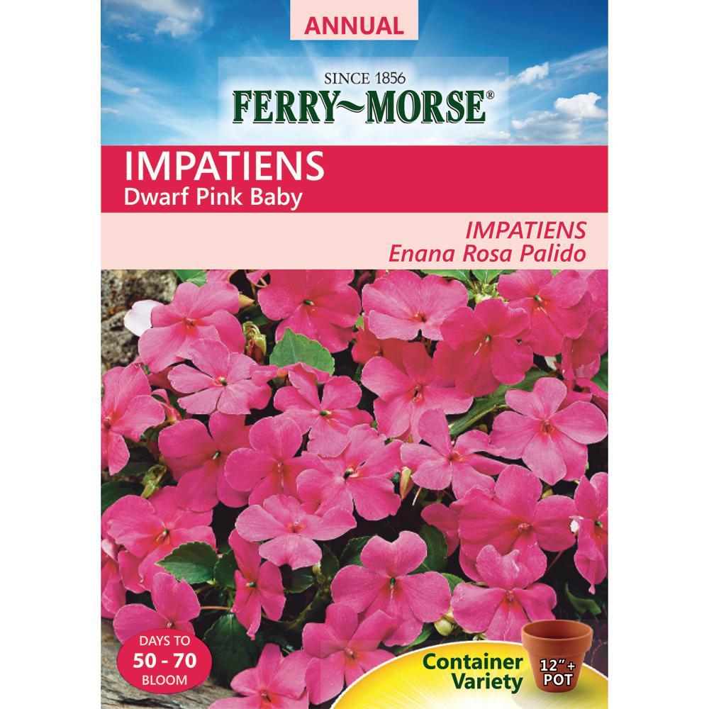 Hibiscus garden plants flowers garden center the home depot impatiens dwarf pink baby seed izmirmasajfo