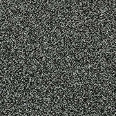 Carpet Sample - Wholehearted I - Color Foggy Night Twist 8 in. x 8 in.