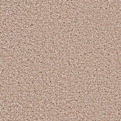 Carpet Sample - Gateway I - Color Dutchess Texture 8 in. x 8 in.