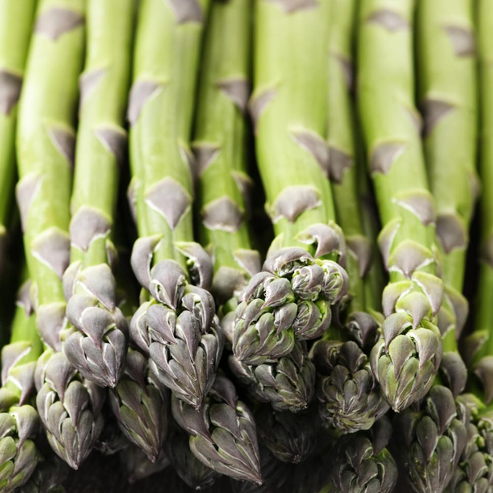 van zyverden gmo free asparagus mary washington roots 12 pack