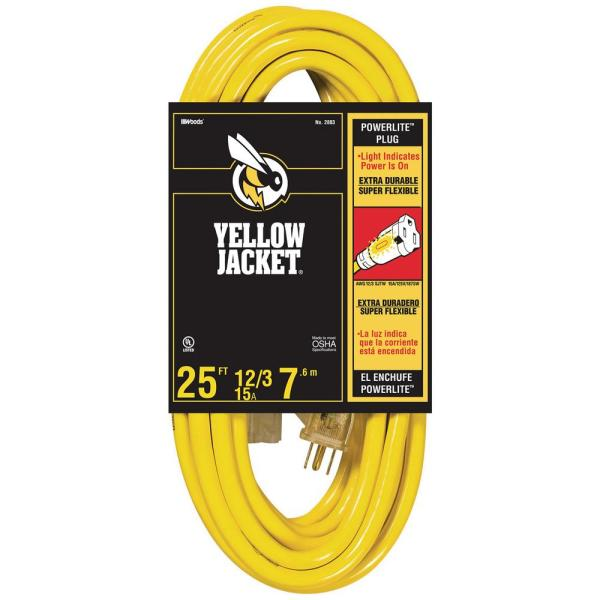 25 ft. 12/3 SJTW Outdoor Heavy-Duty Extension Cord with Power Light Plug