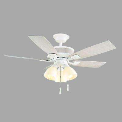 Riverwalk 42 in. Indoor/Outdoor Matte White Ceiling Fan with Light Kit and Shatter Resistant Shades