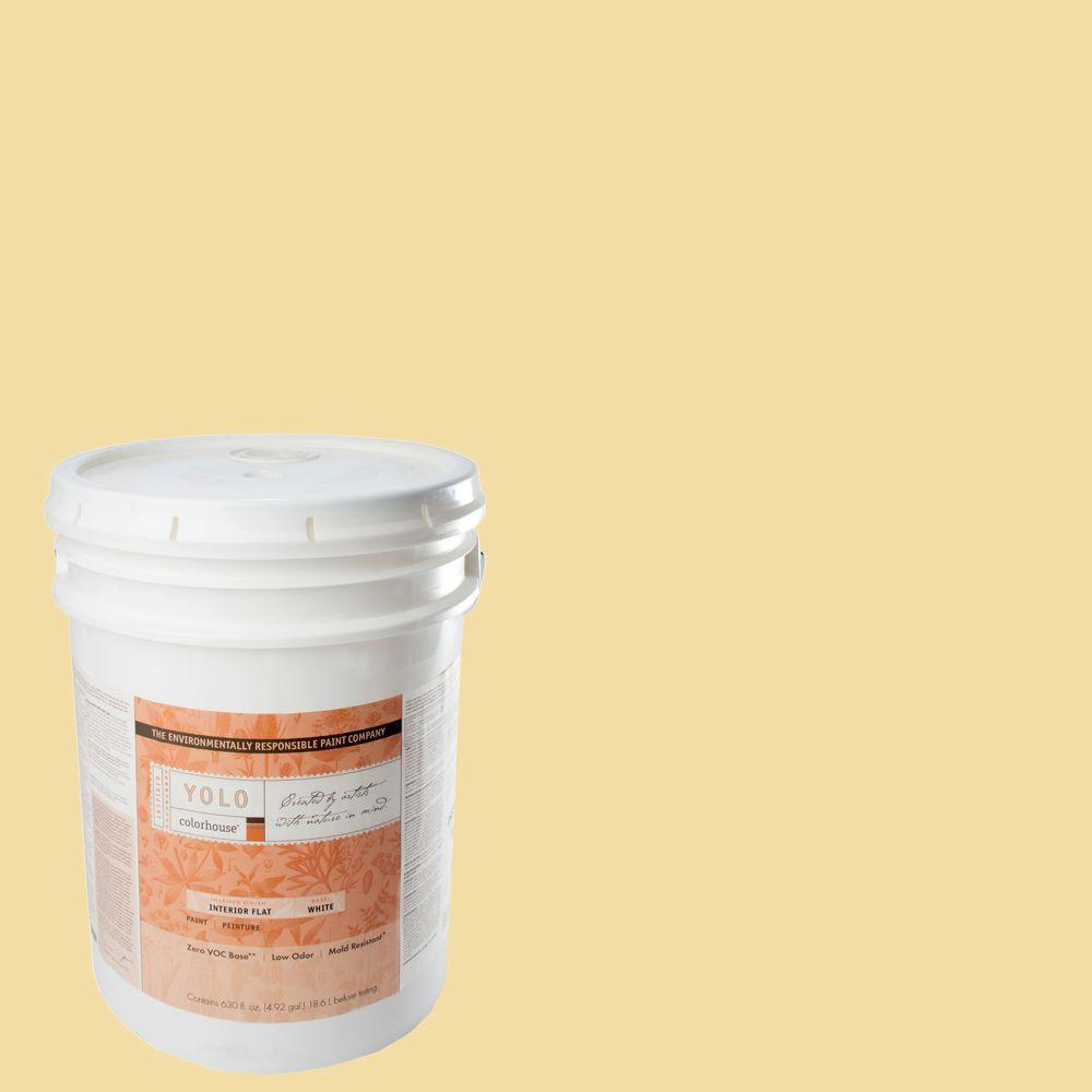 YOLO Colorhouse 5-gal. Grain .02 Flat Interior Paint-DISCONTINUED