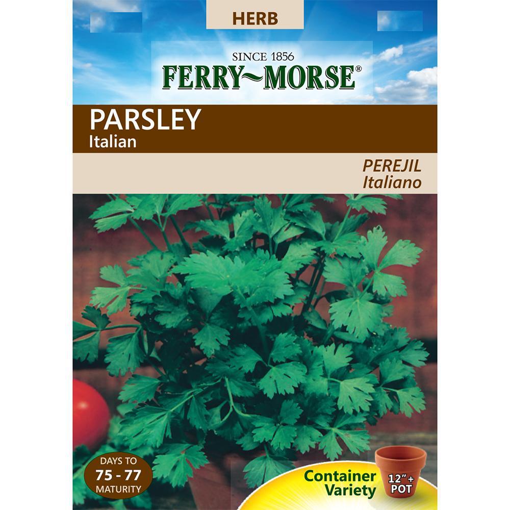 Parsley Dark Green Italian Seed