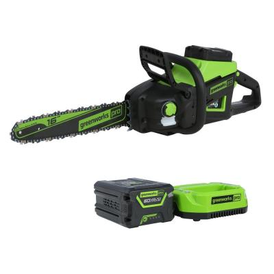 PRO 16 in. 60-Volt Battery Cordless Chainsaw with 2.5 Ah Battery and Charger