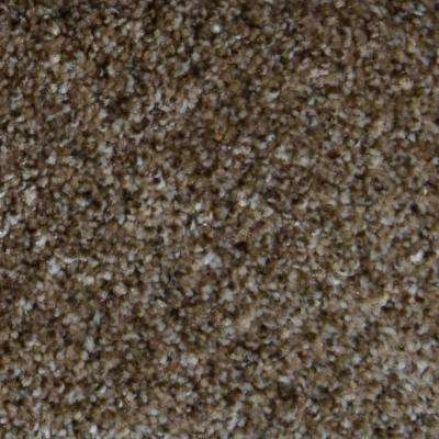 Carpet Sample - Appalachi II (S), (F) - Color Day Trip (F) Texture 8 in. x 8 in.